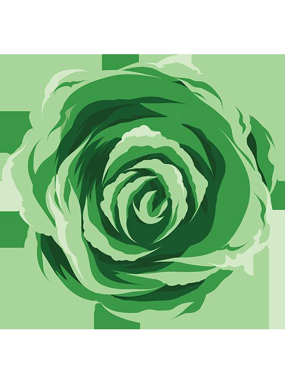 Prydkål - Fyld selv altankasser fra Greenify