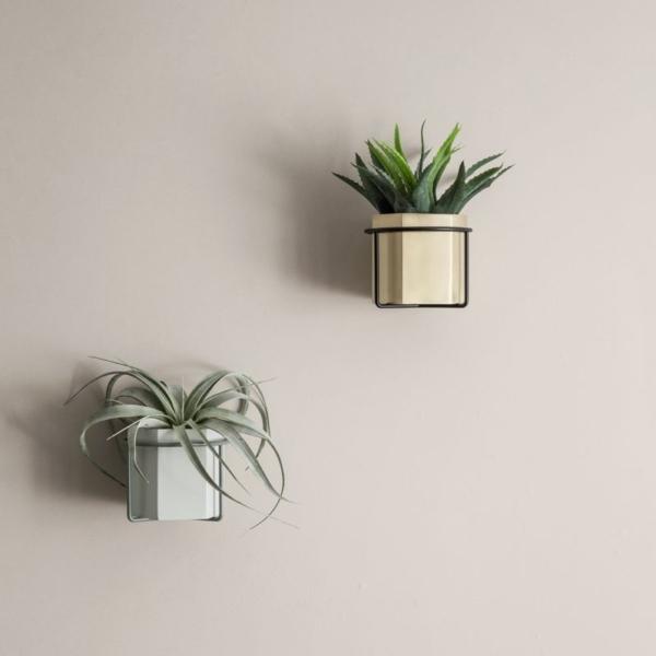 Ferm plant holder