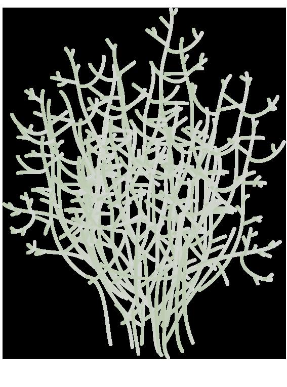 Vindheks - Fyld selv altankasser fra Greenify