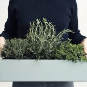 Plant_Box_Small_2