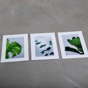 greenify postkortjpg