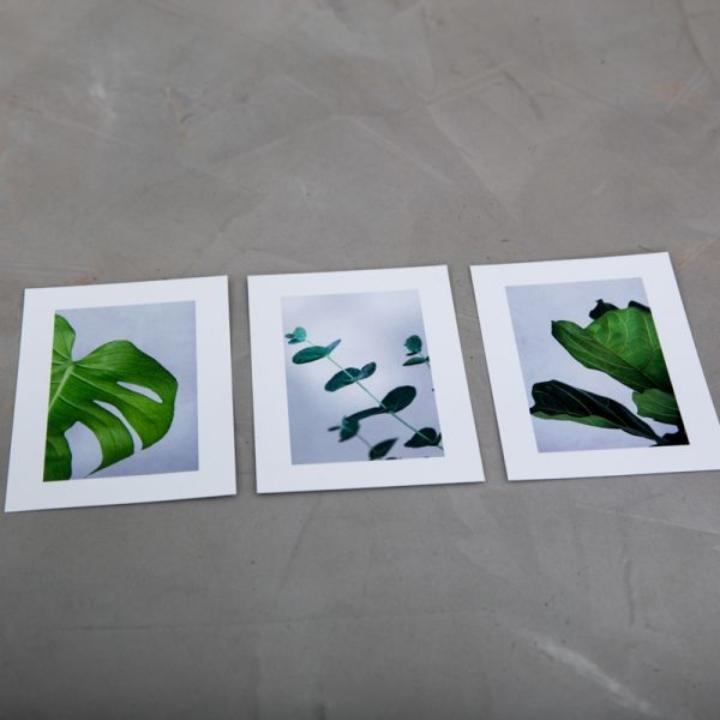 Greenify Postkort fra Greenify