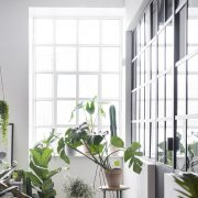 Den lyse vindueskarm