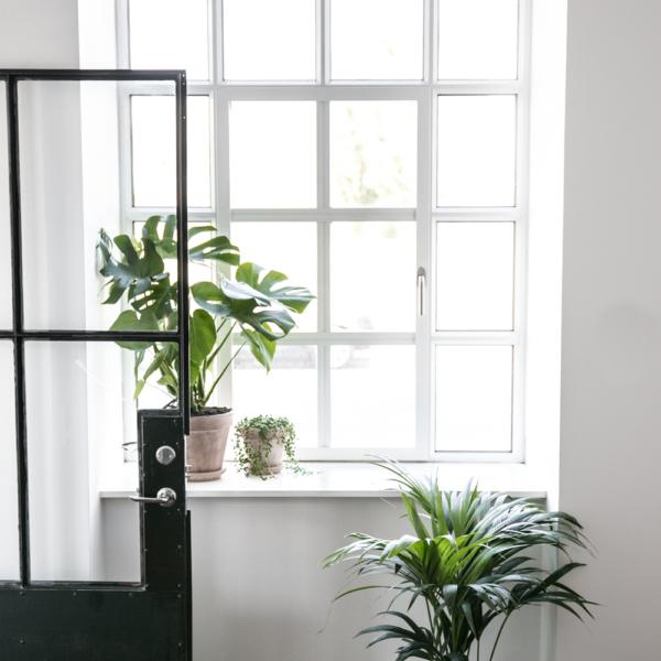 Plantepakke Greenify