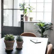 Plantepakke-kvadrat2