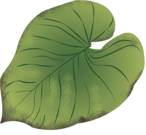 planteguide2_næringsmangel