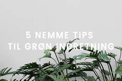 5 nemme tips til grøn indretning