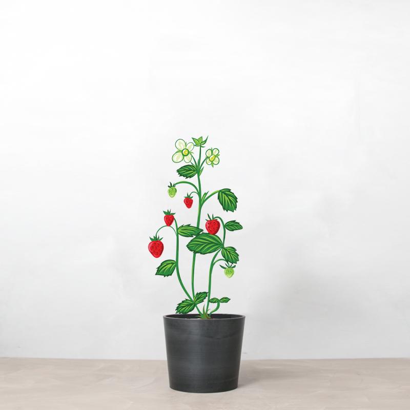 Jordbær i krukke fra Greenify