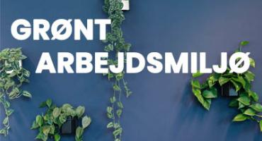 Grønt arbejdsmiljø med Greenify