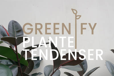 PLANTE TENDENSER 2019