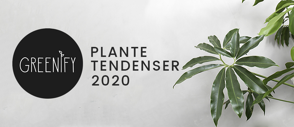 Greenify Plante Tendenser 2020