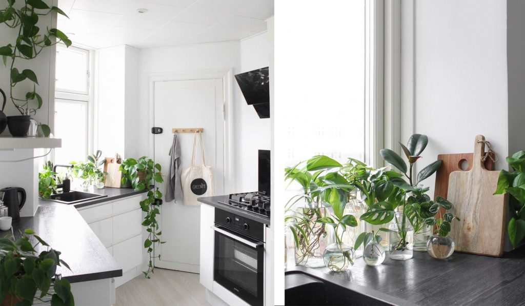 Hjemme hos Lasse - køkken