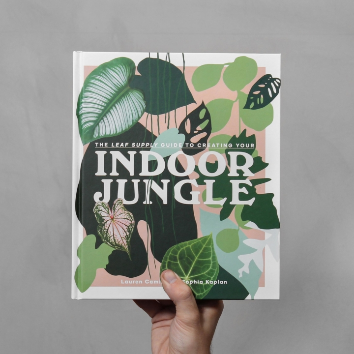 Indoor Jungle fra Greenify