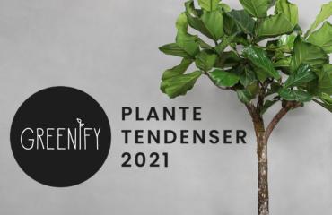 Greenify Plantetendenser 2021