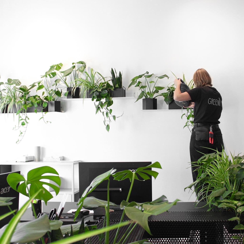 Planteservice fra Greenify