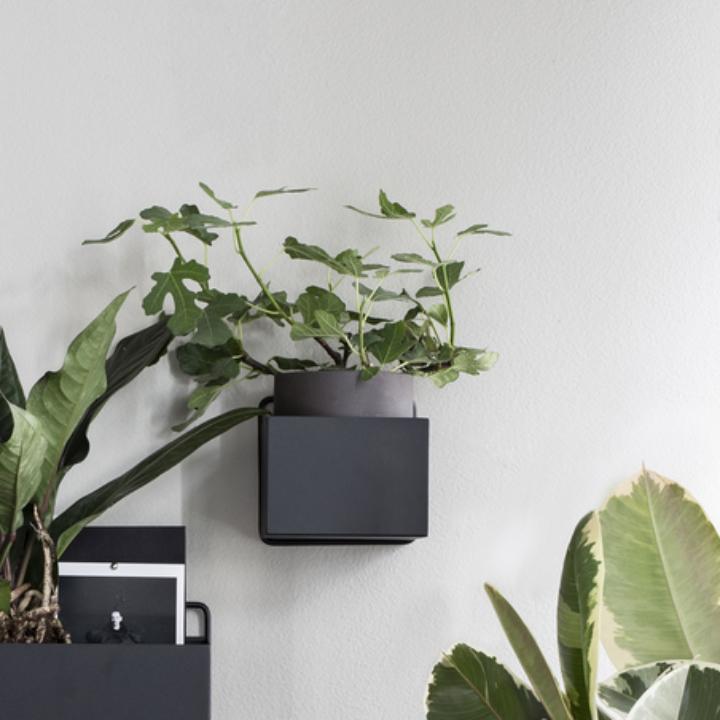 Wall Box Square - Greenify