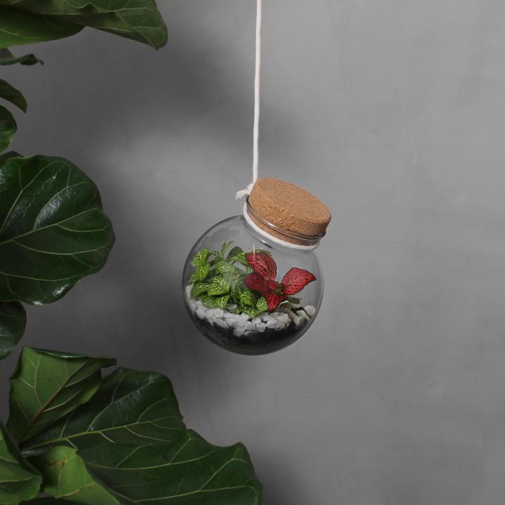 Hængende Planteterrarium fra Greenify